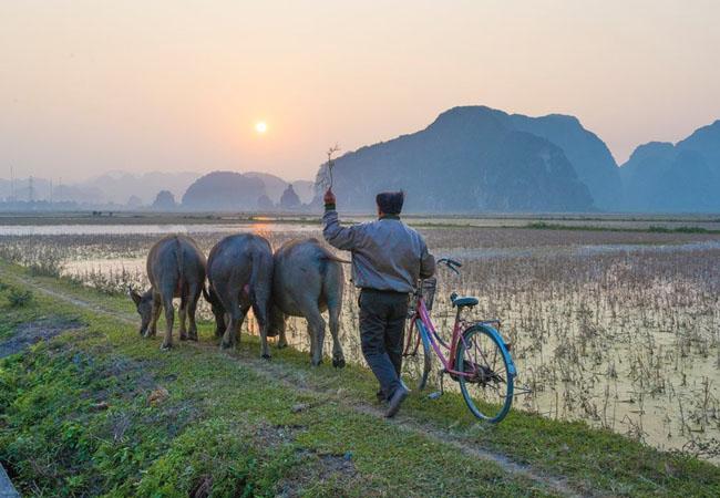 Khách Tây kể những trải nghiệm khó quên ở Việt Nam